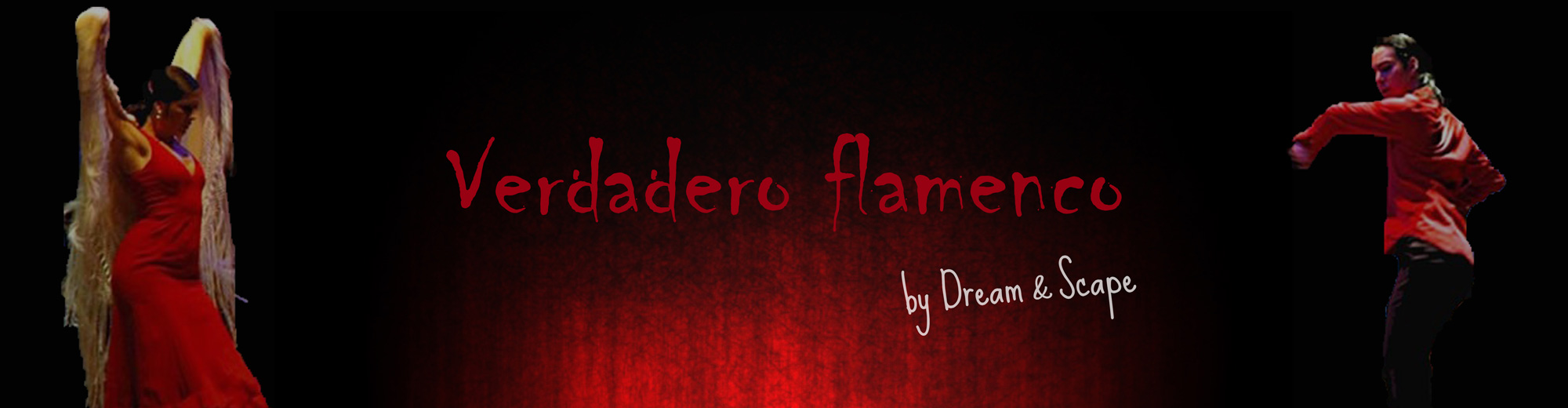 Verdado Flamenco spectacle artistique